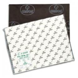 CANSON Feuille de papier dessin C A GRAIN 180g 50x65cm Ref-21183