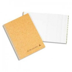 LE DAUPHIN Piqûre journal folioté 21x29,7 cm 100 pages