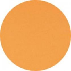 CLAIREFONTAINE Ramette de 500 feuilles papier couleur TROPHEE 80 grammes format A4 saumon 1769