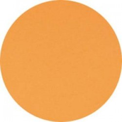 CLAIREFONTAINE Ramette de 500 feuilles papier couleur TROPHEE 80 grammes format A4 clementine 1878