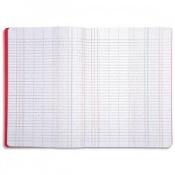LE DAUPHIN Piqûre coloris assortis 25 x 32 cm quadrillé 5x5 numéroté 80 pages