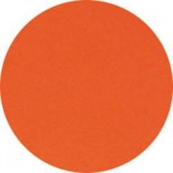 CLAIREFONTAINE Ramette de 500 feuilles papier couleur TROPHEE 80 grammes format A4 rouge cardinal 1873