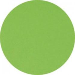 CLAIREFONTAINE Ramette de 500 feuilles papier couleur TROPHEE 80 grammes format A4 vert menthe 1875